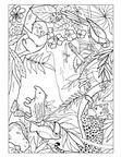 Amazon Rainforest Animals Coloring Book Page