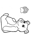 cute-bear-coloring-pages-017