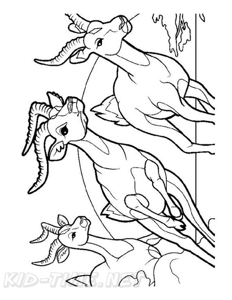 Animal Colorings – Bighorn | Coloring pages, Animal sketches ... | 594x459