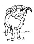 Bighorn Sheep Ram Coloring Book Page