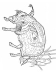 boar-coloring-pages-004