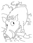 boar-coloring-pages-010