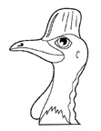 Cassowary Coloring Book Page