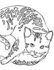 Bengal Cat Coloring Book Page