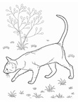 Bombay Cat Coloring Book Page