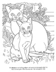 Burmese Cat Breed Coloring Book Page