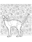 Devon Rex Cats Coloring Book Page