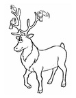 Deer Coloring Pages 015