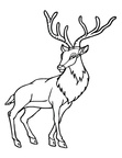 Deer Coloring Pages 049