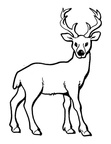 Deer Coloring Pages 058