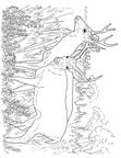 Deer Family Coloring Book Page