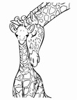 Baby Giraffe Coloring Book Pages
