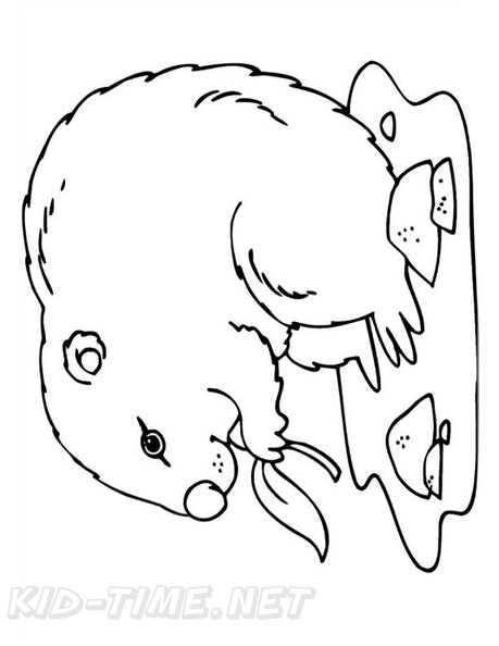 Groundhog Day Coloring Book Page | Free Coloring Book Pages ...