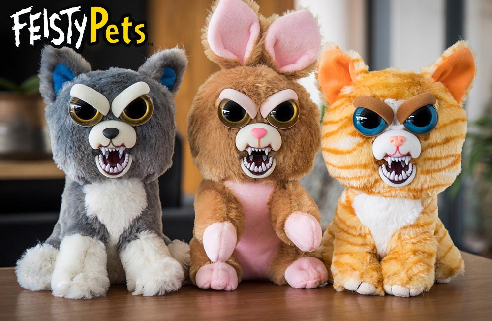 Feisty Pets Kids Time